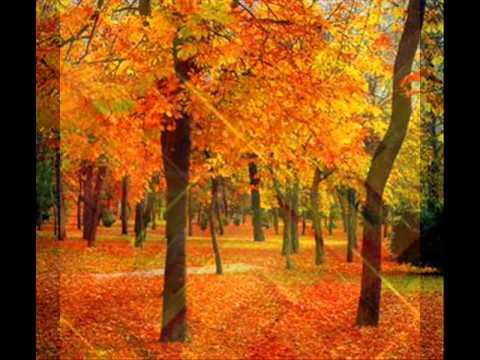 Colores frios y calidos youtube - Imagenes de colores calidos ...