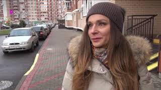 ТВ-сюжет убийство кота в Краснодаре