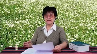 Homeopátia Dr. Horváth Katalin 3. A homeopátia tudományos alapjai: a rendszerszemlélet