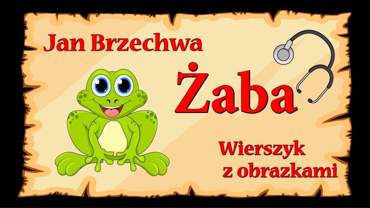 żaba Jan Brzechwa Animowany Wierszyk Z Obrazkami