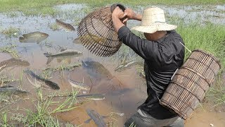 We Survival - Catching Fish With Primitive Tools