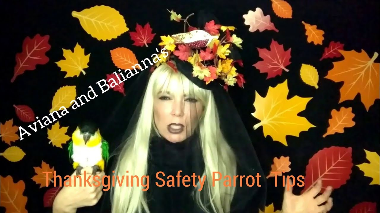 Aviana and Balianna's Thanksgiving Parrot Safety Tips!