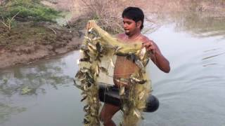 Amazing fish hunting caught 20 kg fish and cooking | In my village