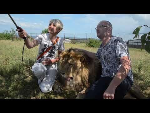 Девушка 5 лет приезжает к льву МАРСЕЛЮ !