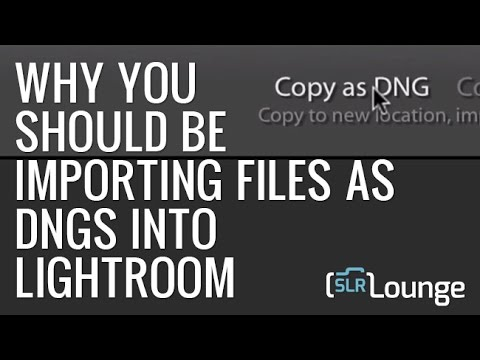 Why You Should Be Importing Files as DNGs into Lightroom