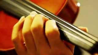 "I played ""The Theme of Marco and Gina"" from ""Porco Rosso"" by Violin..."