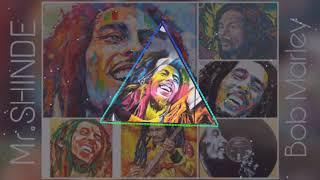 Bob Marley Hum Na Maare (EDM MIX)    Mr.SHINDE   