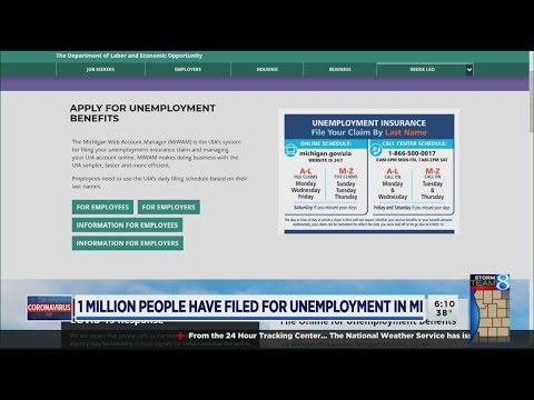 Michigan Unemployment, Other Online Services Are Down