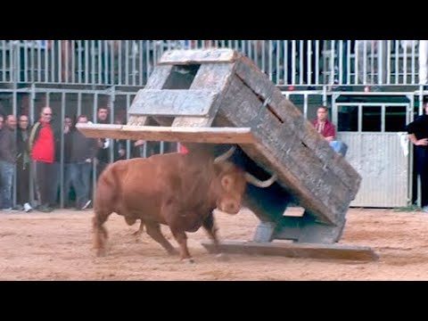 15 Abnormally Strong Bulls That Actually Exist