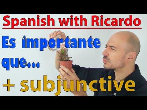 Level B2 - Subjunctive (12)
