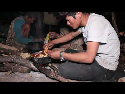 How to farm sheep in mountain regions ? ll Primitive technology