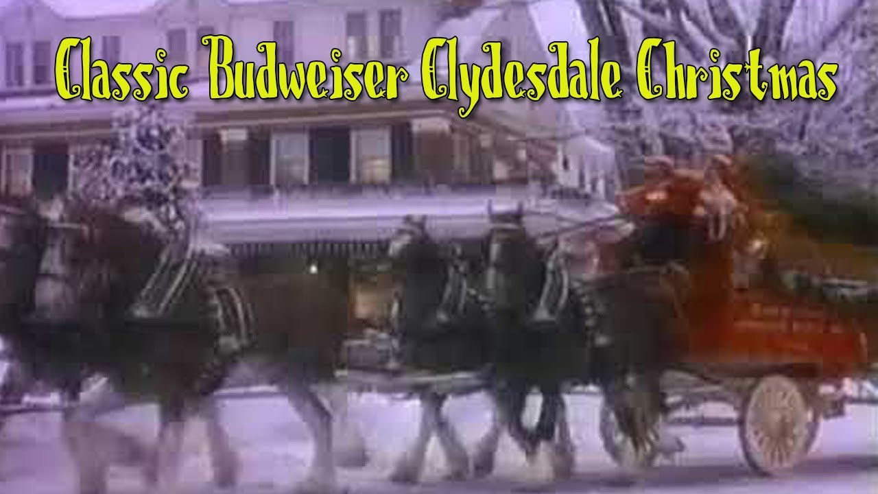 Will There Be A Budweiser Christmas Commercial 2020 Budweiser Clydesdale Christmas Commercials 2020 | Cqhzre