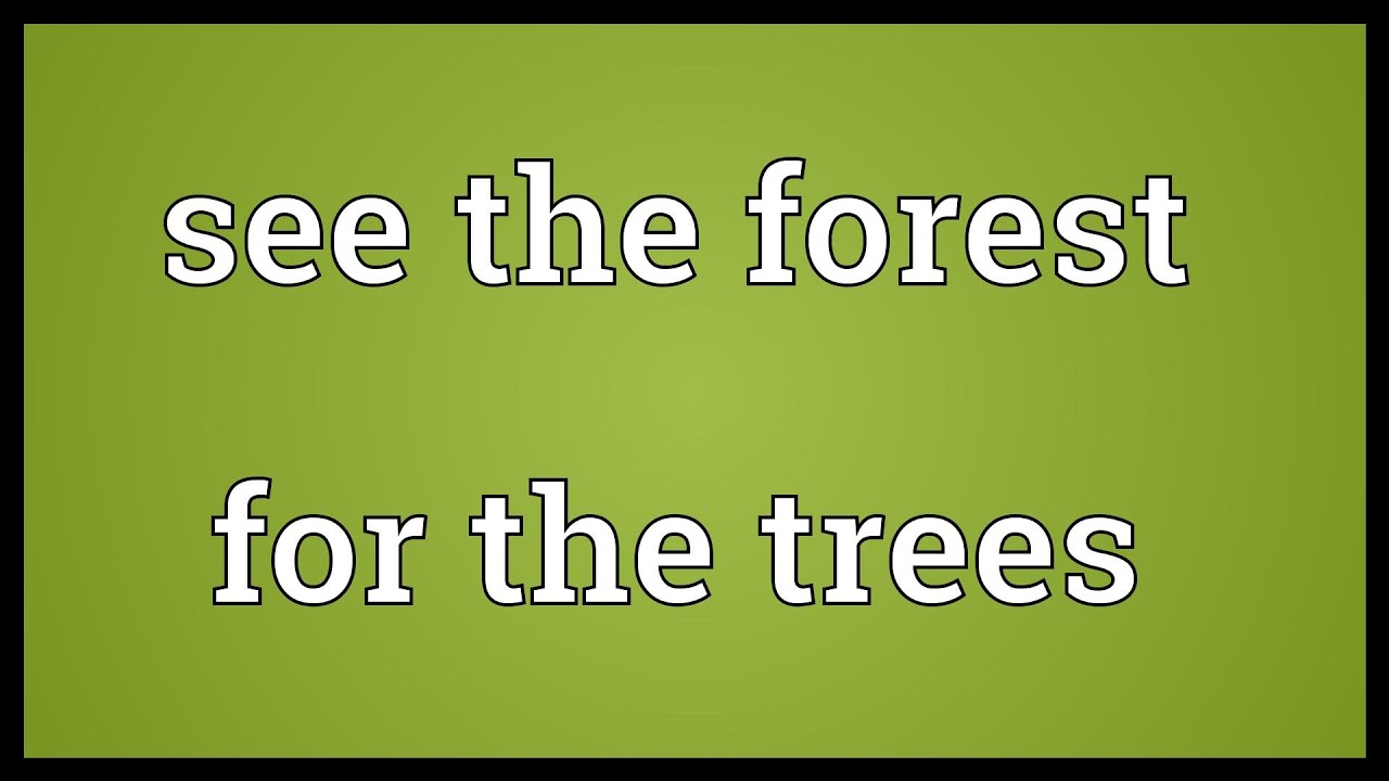 See the forest for the trees Meaning