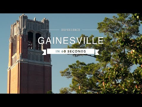 Florida Travel: Explore Gainesville In 60 Seconds