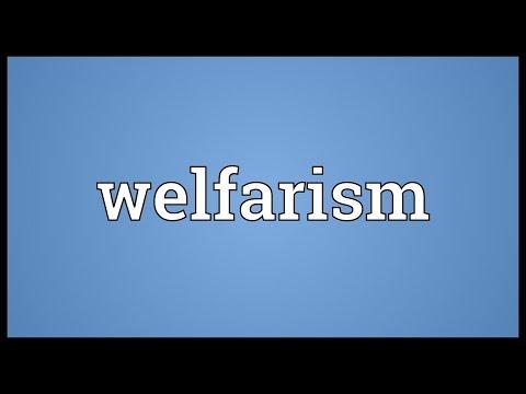 Header of welfarism