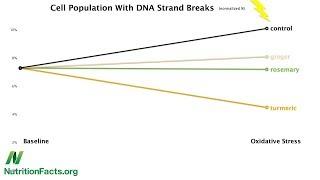 Okořeňme si ochranu naší DNA