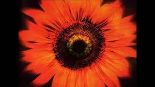 Lacuna Coil - Comalies [2004 Deluxe Edition] (Full Album)