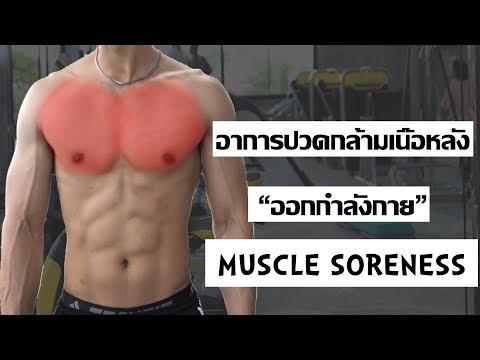 """DOMS"" อาการปวดกล้ามเนื้อหลังออกกำลังกาย"