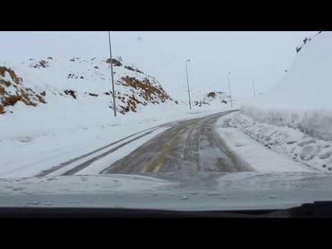Snow Cedars 31 seconds meet the match