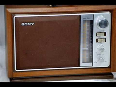 1974 NY State Radio Election Ads: Wilson-Carey & Lefkowitz-Abrams