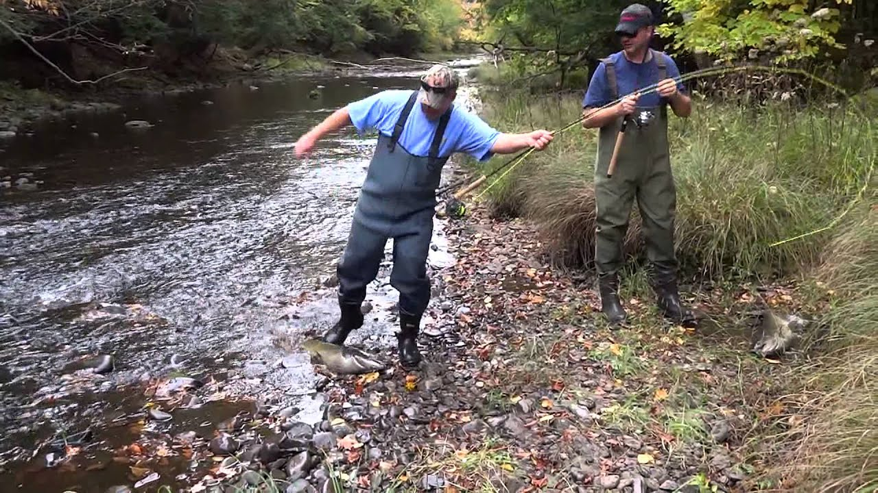 Fish landed salmon river pulaski ny october 2013 youtube for Salmon fishing pulaski ny