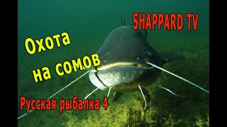 Русская рыбалка 4 Охота на монстра НАЖИВКИ И БЛЕСНА
