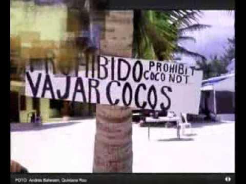 La incultura en vídeo: los carteles más graciosos que he visto ...