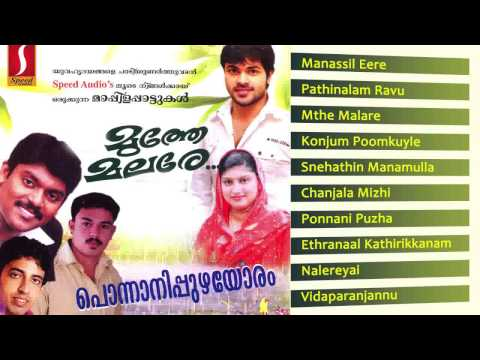 muthe malare New album songs | latest album songs | safi kollam , vithu prathap - മുത്തെ മലരേ