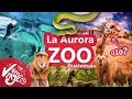 30,000 MIL ANIMALES en un Zoológico 🦒 - La Aurora de Guatemala 🇬🇹