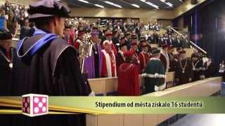Plzeň v kostce (11.11.-17.11.2013)