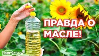 ПРАВДА О РАСТИТЕЛЬНОМ МАСЛЕ. Вред и польза растительного масла. Михаил Советов