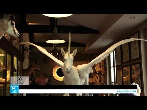 متحف ديرول في باريس.. جنة فضول الزائرين  - نشر قبل 3 ساعة
