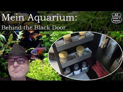 Behind the Black Door (DIY) | Mein Aquarium 23