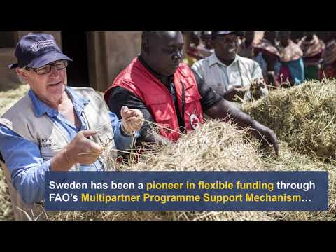 FAO + Sweden: A Report on Partnership