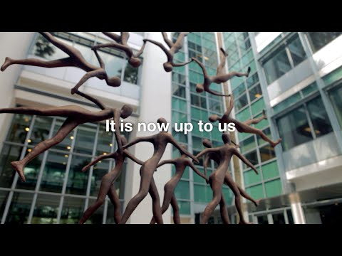 The INSEAD Executive MBA: Lessons from the Programme of a Lifetime