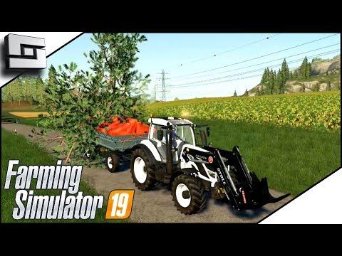 Chainsaw Forestry FAIL! - Farming Simulator 19 Gameplay E5