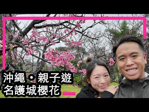 [Travel] 沖繩 親子遊 EP2 - 名護城櫻花 / 夾公仔 / Aeon Mall Rycom - 2020 冬季