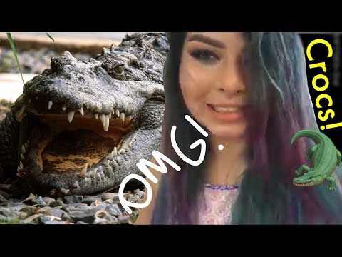 Hanging out with some dinosaurs! LIVESTREAM