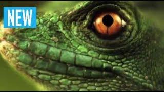 Документальный Фильм Скорость жизни - Убийцы Центральной Америки - Discovery Channel