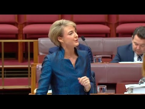 Michaelia Cash blames Labor for low paid workers in high income households claim