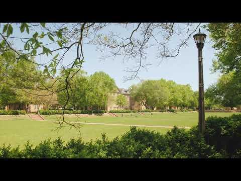 Serene Campus Scene: Sunken Garden with LoFi