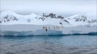 Campaña científica Antártica 2013