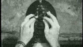 Pig The Velvet Underground VENUS IN FURS.mp3