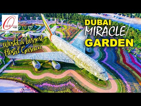 Dubai Miracle Garden | World's Largest Natural Flower desert garden | Dubailand