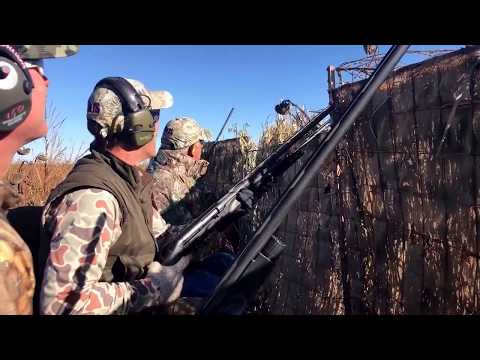 Insane Crow Hunt - 300 Bird Morning