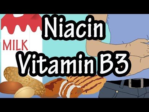 Niacin Vitamin B3 Per Day Foods High In Niacin Vitamin B3 Benefits Of Niacin Vitamin B3