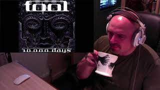 Download Tool - Vicarious (Reaction) Mp3 and Videos