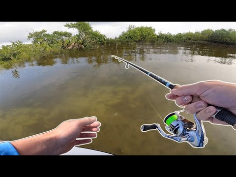 Flats Fishing DEEP Into Everglades JUNGLE! (Florida Send DAY 5)