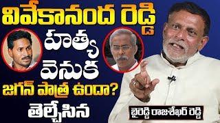 Byreddy Rajasekhar Reddy Gives Clarity on Ys Jagan Involvement in Ys Vivekananda Reddy Issue