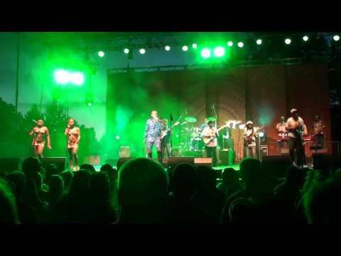 Seun Kuti Live at Sierra Nevada World Music Festival 2014